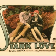 Stark Love at the Tennessee Theater